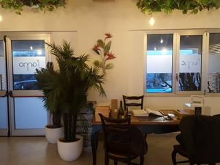 BAR & RESTAURANTS MONDOSTICKERS Finestre & PorteDecorazioni per finestre