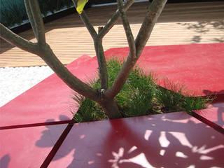 Ambiente Arquitectos Asociados, S.A de C.V. Minimalist style garden