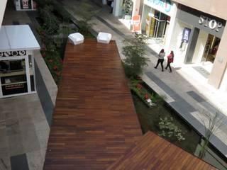 Ambiente Arquitectos Asociados, S.A de C.V. Modern Terrace