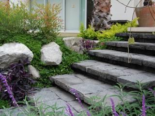 Ambiente Arquitectos Asociados, S.A de C.V. Rustic style garden