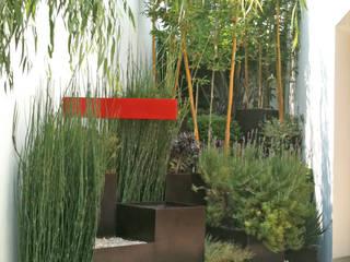 Ambiente Arquitectos Asociados, S.A de C.V. Modern garden