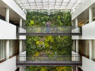 Modern style conservatory by Sundar Italia Modern