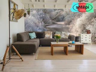 Proyecto de sala diseño escandinavo de PAPEL TAPIZ SHTEPI Escandinavo