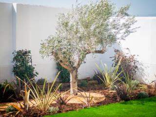 REMANSO DE PAZ PARA FAMILIA INGLESA EN PANTANO DE CUBILLAS (GRANADA) Jardines de estilo moderno de Landscapers Moderno