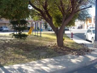 Mejoramiento de zona en parque. Agenda Verde