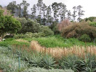 Terramar by Brett Walker Landscaping Country