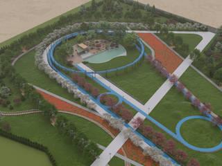 TNR Architecture+Design Modern garden