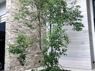 JARDÍN HNZ Jardines modernos: Ideas, imágenes y decoración de Vivero Antoniucci SA Moderno