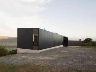 Casa del Peumo Casas de estilo minimalista de Whale! Minimalista