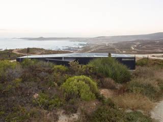 Casa Estirada de Whale! Minimalista