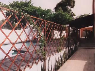 African garden - Maputo Jardins tropicais por Clara Guedes - Garden Design Tropical