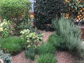 Clara Guedes - Garden Design Tropical style gardens