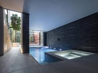 Victorian Remix Modern pool by Guarnieri Architects Modern