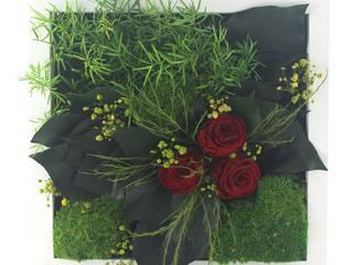 Solmayan Yosun Tablo Miracle Rose silvanus dikey bahçeler