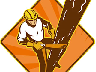 by Tree Removal Barrie