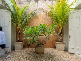 Taller Estilo Arquitectura Jardines con piedras