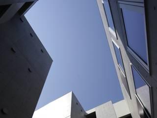 hikarium モダンな 家 の SOCIUS一級建築士事務所 モダン