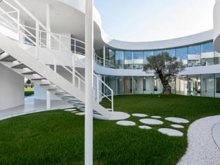 VERDE AZIENDALE Giardino moderno di ANDREA BARIANI GIARDINI SRL Moderno