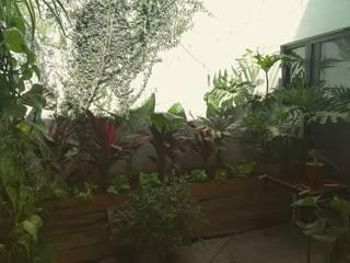 Verde Lavanda Garden Plant pots & vases