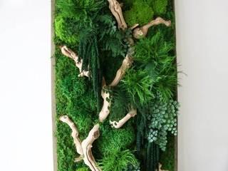 10 Yıl Boyunca Canlı Yosun Tablolar Akdeniz Oteller Dikey Bahçe & Yosun Duvar - Art Wall Moss Akdeniz