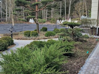 Медиссон парк , Лесная сказка от GARDEN.HEROES