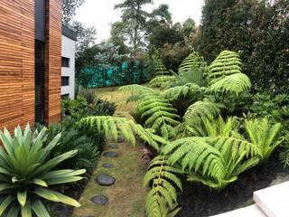 URRETA Arquitectura del Paisaje Jardin tropical