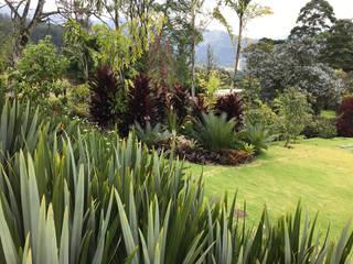 FUENTE CLARA Jardines de estilo tropical de URRETA Arquitectura del Paisaje Tropical