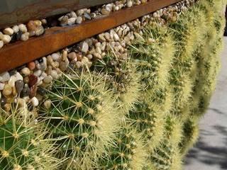 Dikey Bahçede yeni soluk Dikey Bahçe & Yosun Duvar - Art Wall Moss Rustik