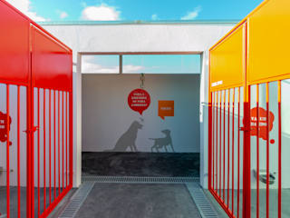 Canil Municipal de Vila Franca de Xira Centros de exposições minimalistas por Projecto 84 Minimalista
