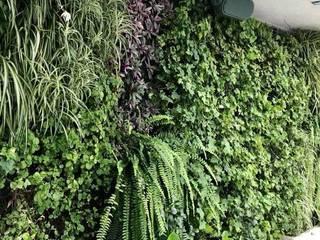 Jardines verticales Paredes y pisos de estilo tropical de Arquitectura Viva - Alexandra Patow Tropical