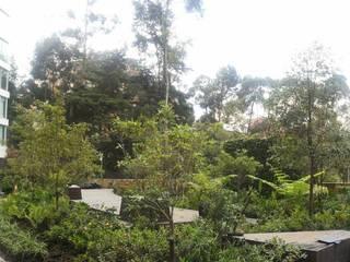 Jardines Rosales Peñas Blancas Jardines de estilo moderno de Paisaje Urbano Moderno