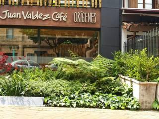 Jardín Frontal Juan Valdéz - Zona G Bogotá Jardines de estilo tropical de Paisaje Urbano Tropical