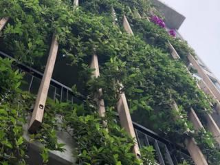 Paisajismo Edificio Balcones y terrazas tropicales de Arquitectura Viva - Alexandra Patow Tropical