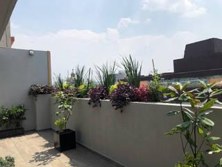 Terraza Colorida de fine: entorno en equilibrio