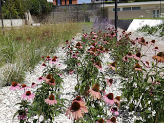 Giardino pubblico a Pesaro (PU). di Fabio Uguccioni Garden Designer Mediterraneo