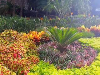 EcoEntorno Paisajismo Urbano Jardins de fachada Multicolor