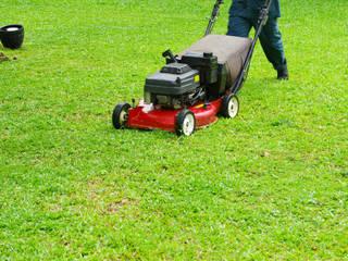Jacksonville Lawn Service Bungalow