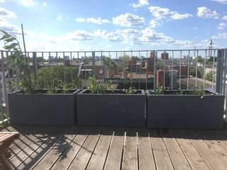 Dachterrasse mit Kunststoffgefäßen und autom. Bewässerung Moderner Balkon, Veranda & Terrasse von Pflanz im Glück Modern