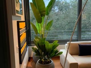 Plantas en macetas de Arquitectura Viva - Alexandra Patow Tropical