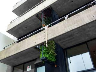 Paysandú doble jardín vertical Edificios de oficinas de estilo tropical de Amazonas Paisajismo Tropical
