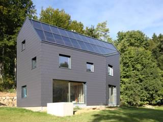 Einfamilienhaus in Velden - Fassadenplatten Cedral Deutschland Einfamilienhaus Schwarz