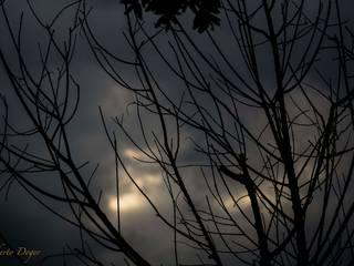 Percepciones de Roberto Doger Fotografía Ecléctico