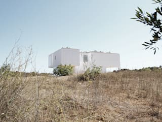House in Vales por AAP - ASSOCIATED ARCHITECTS PARTNERSHIP Moderno