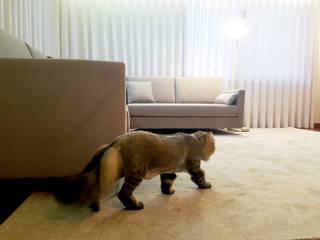 Minimalist dining room by MIA arquitetos Minimalist