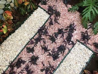 Los Textiles SCH2laap arquitectura + paisajismo Jardines de piedra Piedra Rosa