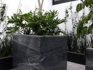 Macetas en terraza de Grupo Flores Moderno