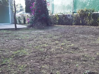 Recuperación de jardín de Grupo Flores