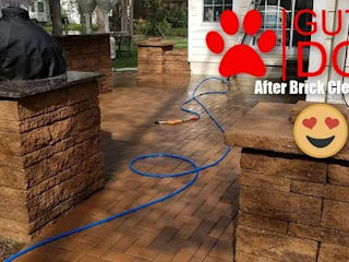 GUTTERDOGS Affordable Soft Power Washing & Safe Roof Cleaning Maryland