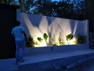 Modern Garden by Taller Veinte Modern