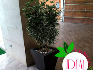 Diseño de interiores IDEAL Jardinería Pasillos, vestíbulos y escaleras minimalistas